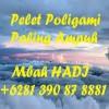 Pelet Poligami Paling Ampuh